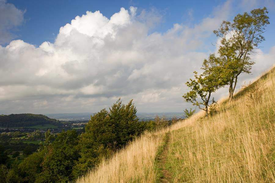 Best Walking Trails In The Cotswolds