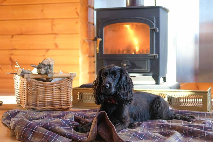Dog Friendly Cotswold Places To Stay