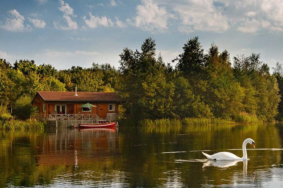 Montys Retreat Cabin
