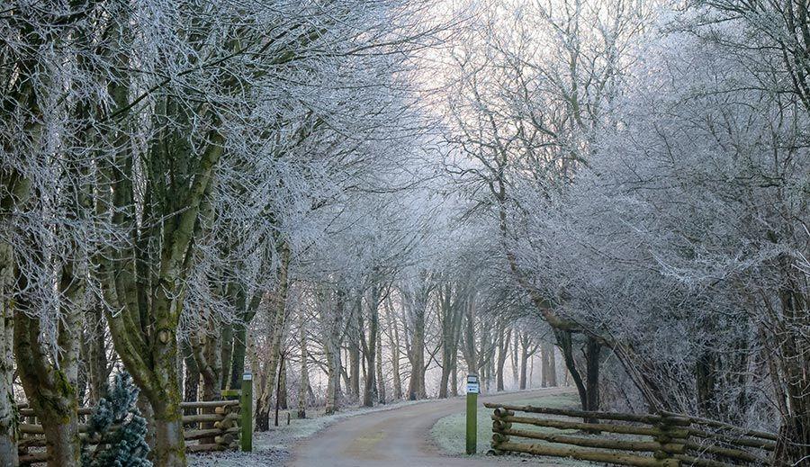 Winter Walking Cotswolds
