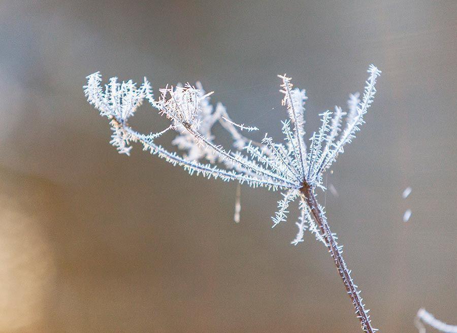 nature-holiday-england