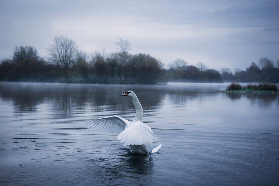 winter-in-the-Cotswolds (1)