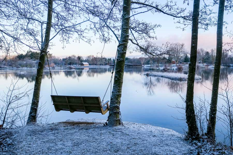 Winter-Birdwatching-Holidays